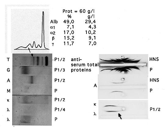 Guz And Pontet Figure 4